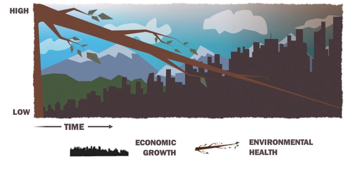 Understanding the Environmentalist's Paradox